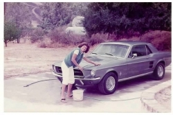 1967 Ford Mustang - picture c. 1983